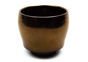 Bronze | Japanese Cup