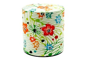 Spring Green 100g | Paper Tea Canister